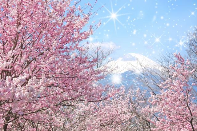 世界を旅してドイツに移住した私が実感した、日本のいいところ5つ