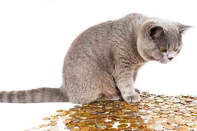 「愛とお金どっちが大事?」なんてナンセンス、「どっちも大事」でいい!