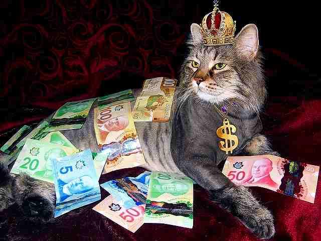 口座残高がマイナスになったダーリンに「君は世界中のお金より価値がある」と言われた話