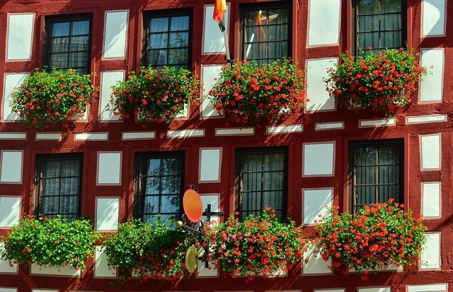 居住国ドイツを好きになりたいのに、なれなくて苦しんだ話