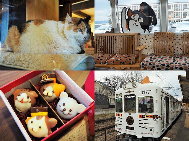 【和歌山・貴志川線】破壊的なかわいさの限定チョコをゲット&猫の駅長「ニタマ」と対面!