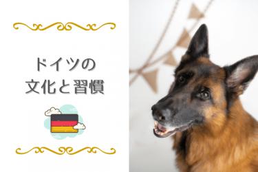 日本人が驚く、意外なドイツの文化と習慣12選